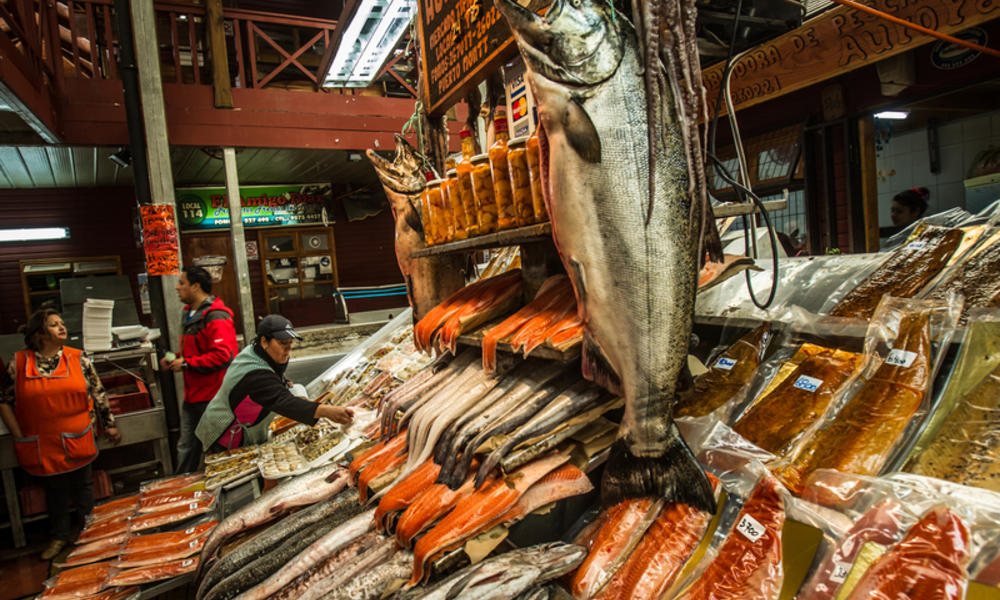 Chilean seafood market