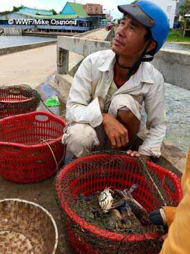 vietnam_bsc_blog2