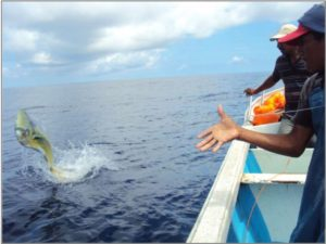 Ecuador Mahi Fishermen