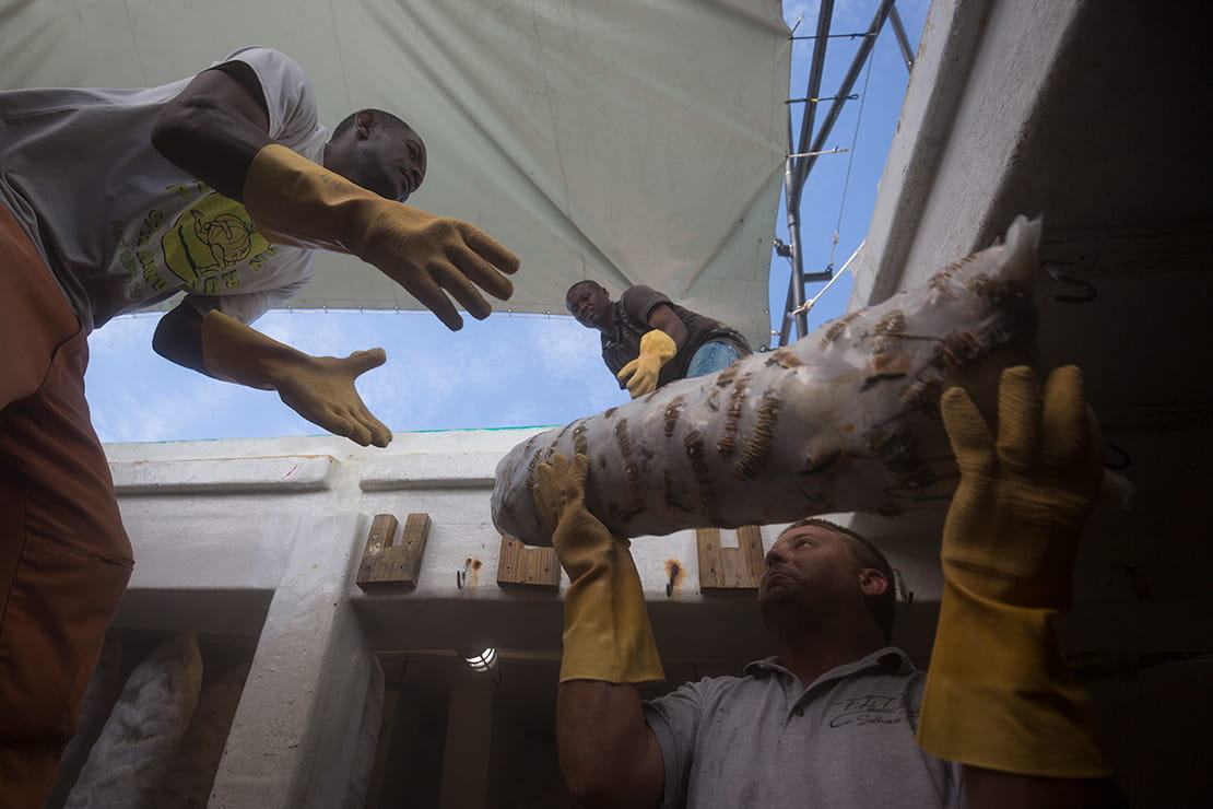Workers unload lobster catch from fishing boat