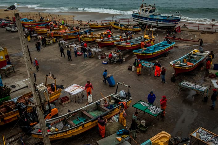 Artisanal fishers sell their morning's catch on small tables next to their boats in Valparaiso, Chile